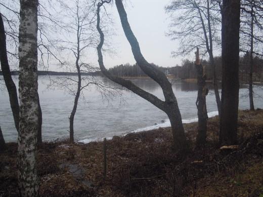 Lahnajärven Suntianlahti vetäytyi jäähän. Rannassa vielä rippeet syksyn ensimmäisestä jäästä.