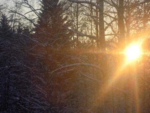 Lemin Kirjava toivottaa kaikille lukijoilleen valoisaa ja rauhallista joulua. Pimeys väistyköön.