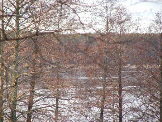 Vaikka ihan kaunishan lumeton Lahnajärvi on, kun aurinko alkoi paistaa.