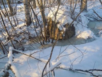 Virtaava puro on jäätynyt rinteeseen niille sijoilleen.