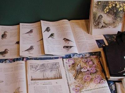 Tom Björklund on kuvittanut paljon myös luontolehtien artikkeleja.