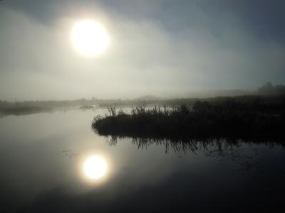 Parikkalan Siikalahdellakin oli varmasti pihlajia, mutta eukkomamma innostui kuvaamaan aamu-usvaa.