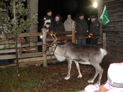 Ja kuinka ollakaan, joulupukki oli laittanut poronsa aitaukseen siksi aikaa, kun itse käyskenteli pihamaalla.