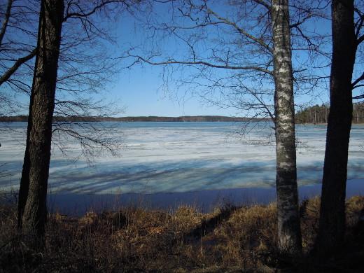 Lahnajärven jää sulaa liki silmissä. Suntianlahden rantaviiva oli lauantaina tämän verren sula.
