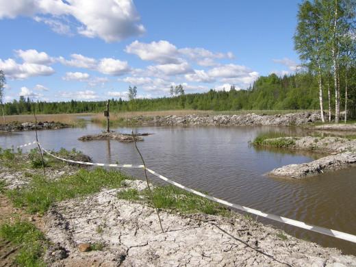 Veden kulku ojassa hidastuu ja kiintoaineet ja ravinteet painuvat pohjaan ennen Avarajokea.