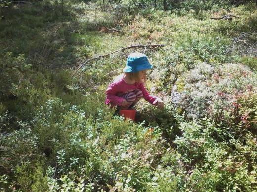 Poutainen hetki kannattaa käyttää hyväksi ja lähteä metsään.