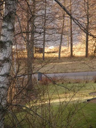 Vihreä ruohikko ja avoimena lainehtiva Lahnajärvi korostivat kevään tuntua.