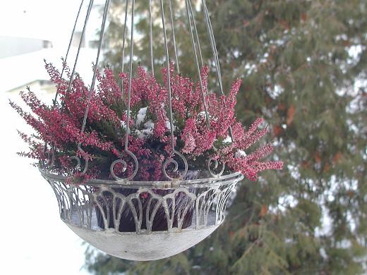 Keväinen lahja ystävältä lämmittää talvellakin. Ja toisen ystävän tuliainen tuo väriä kaamokseen.