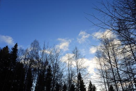 Joulukuun kuudennen värit ovat sininen ja valkoinen. Hyvää itsenäisyyspäivää!