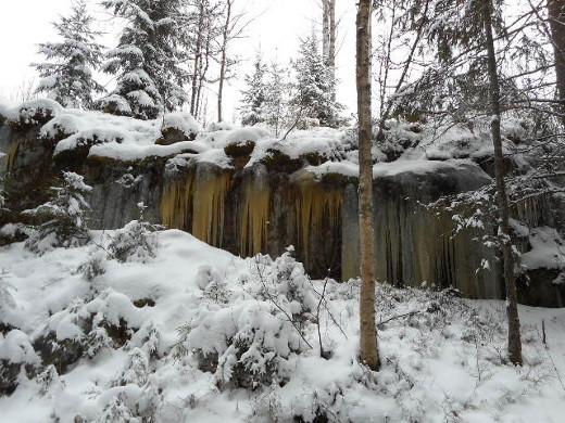 Marraskuu toi metsään talven merkit.
