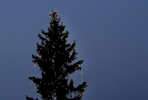 Tähdet tuikkivat joulun odotusta. Odottavan aika on pitkä, mutta joulua valmistava huomaa, että sehän on jo ensi viikolla!