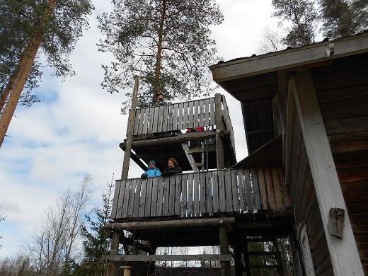 Mäntyperän lintutorni on mukana taistelussa jo 17. kerran.