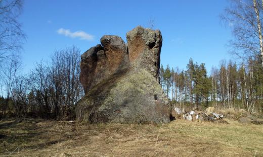 Kiven juurella oli rojukasa.