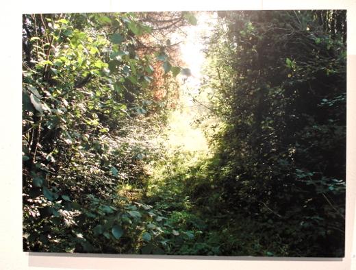 Yhdessä Ritva Kärmeniemen valokuvien kanssa ne muodostavat Heijastuksia-näyttelyn.