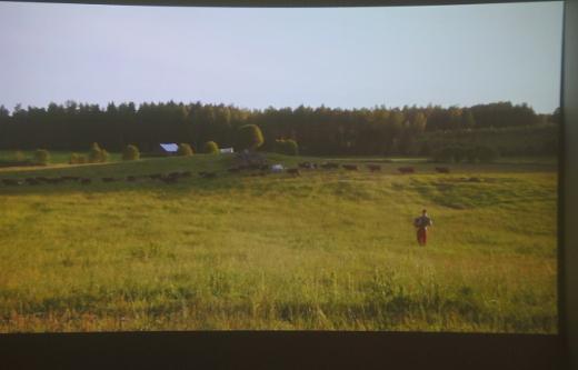 Toisessa videoteoksessa esiintyy kuvaaja itse harmonikkaa soittaen. Yleisönä ovat laiduntavat lehmät.