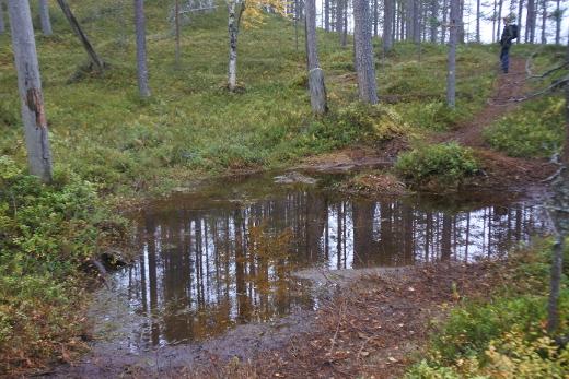 Vettä oli monin paikoin myös poluilla, onhan Kainuu lionnut kesän sateissa oikein kunnolla.