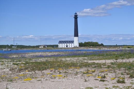 Retken eteläisin ranta oli Sörven saaren eteläkärjessä.