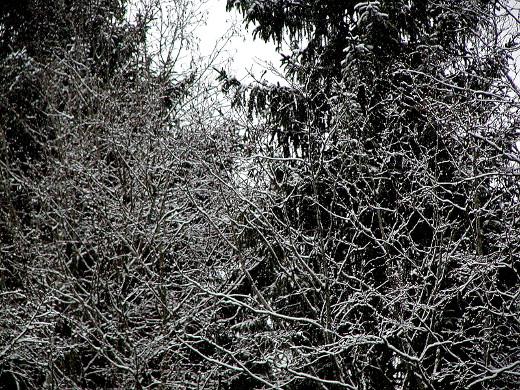 Joko nyt alkoi oikea talvi?