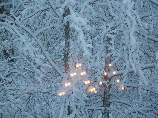 On 2. adventtisunnuntai. Jouluaattoon on kaksi viikkoa.