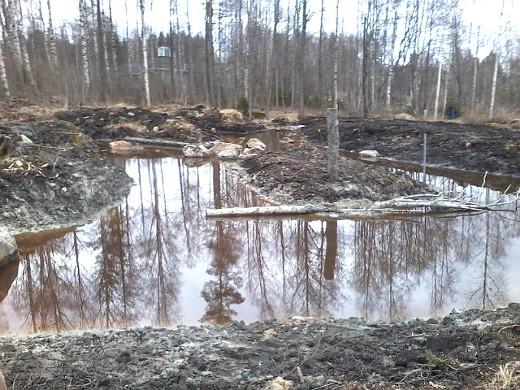 Mikonlahden rantaan Kippurasarven taakse on myös kaivettu kosteikko.