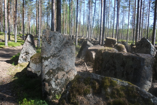 Virolahdelta Miehikkälään ulottuva retkeilyreitti seuraa Salpalinjaa. Panssariesteet paistattelivat toukokuun auringossa, kesän ensimmäisissä helteissä.