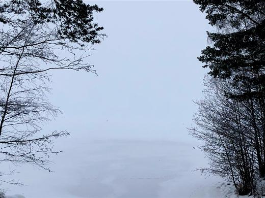 Kivijärvi peittyy sumuun Papinojalta katsottuna.