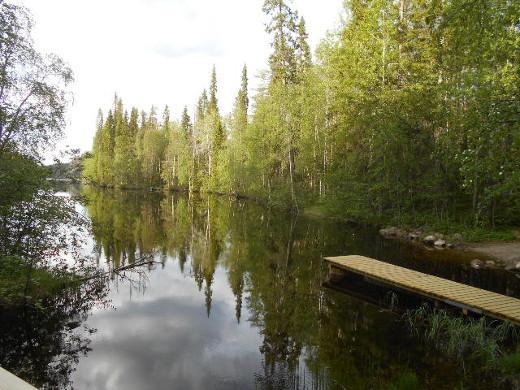 Matkalla pohjoiseen Julma Ölkyllä ihailen rannan kasveja ja kaukana siintäviä kallioita.