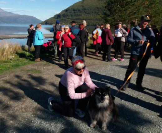 Eränkävijät-ohjelmasta tuttu Äijä-koira toimi oppaana Kilpisjärvellä.