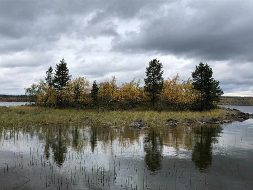 Saari erämaajärvellä Sevettijärven tien varressa.