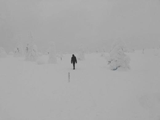 Riisitunturilla Posiolla ei muuta juuri ollutkaan kuin lunta.