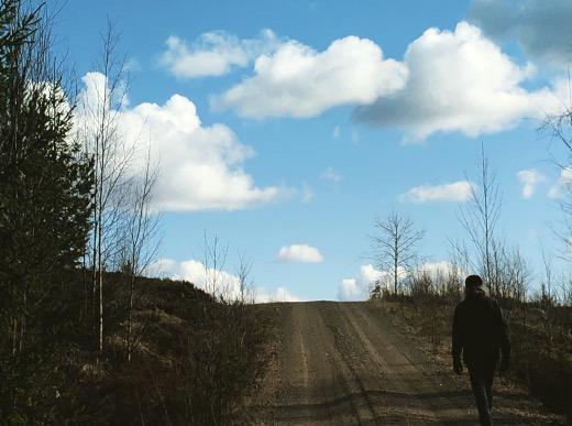 Ruomin Tykkitie on hyvä kävelytie, ja siitä erkanee polkuja ja metsäautoteitä.